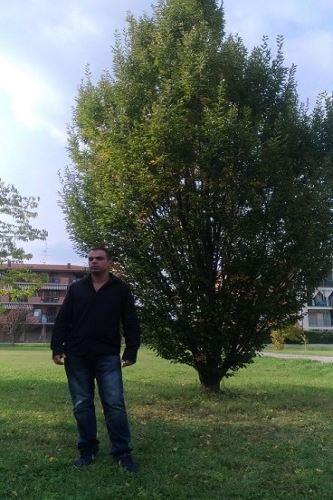 Claudio Da Bologna
